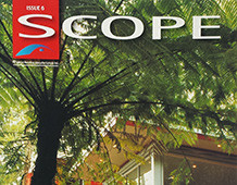 Scope Issue6